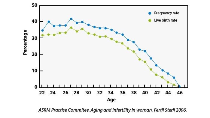 befruchtung wahrscheinlichkeit